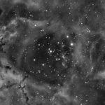 Rosette NGC2239
